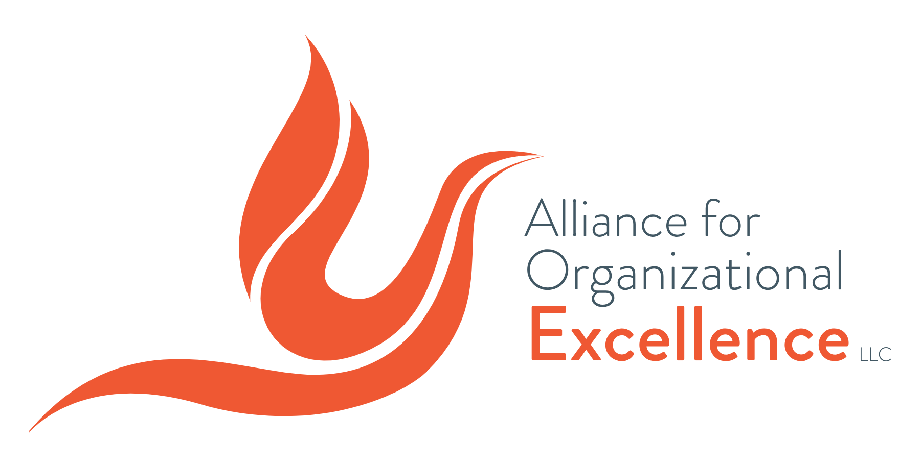 Alliance For Organizational Excellence